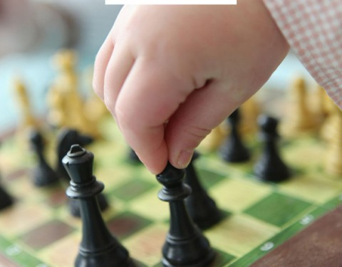 Aportes de la psicología a la enseñanza del ajedrez 2ª Edición